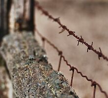 Barriers - ravaged by time... by Scott Howard