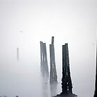 Pilings in the fog by nwexposure