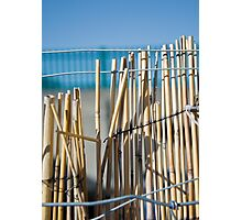 Bamboo Fence Photographic Print