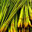 Lemon Grass by DionNelson
