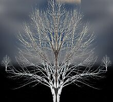 1762 by peter holme III