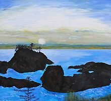 Lighthouse Point Walk, Vancouver Island by Murray Pollard
