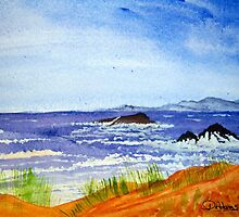 Coastal Mountains by Debbie  Adams