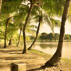 Close to Home - Palm trees lake side by vanyahaheights