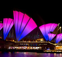 Sails Ahoy_Sydney Opera House by Sharon Kavanagh