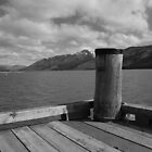 Jetty NZ by Nigel Fox