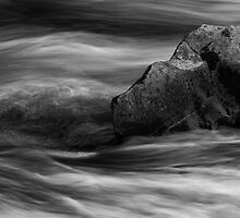Hermitage Water Detail - Just A Stone by Kevin Skinner
