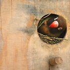 peek a boo by tallulahminky