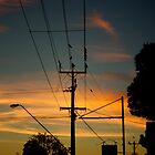 Birds at Dusk — On the Lines by Brad Lynch