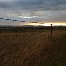 Rural sunrise, Blue Jacket Lookout, Canowindra by DashTravels