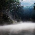 Misty Meroo by Lorraine Creagh