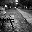 bench in park by waitin' for rain
