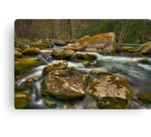 Little Pigeon River Canvas Print
