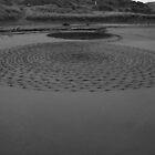 Black Sand 6 by Narani Henson