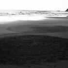 Black Sand 7 by Narani Henson