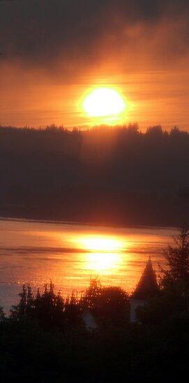 golden columbia river sunrise 4 by Dawna Morton