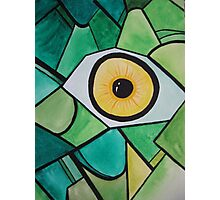 Insect eye Photographic Print