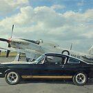 Mustangs by Steven  Agius