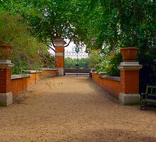 Inside the Chelsea Physic Garden, London by Priscilla Turner