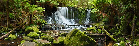 Horseshoe Falls, Mt Field National Park, Australia by Michael Boniwell