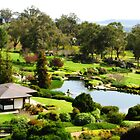 Cowra Japanese Garden by Marilyn Harris
