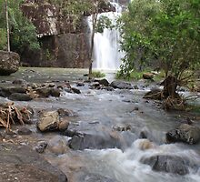 Cedar Creek Falls Proserpine by Paul  Donaldson