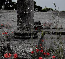 Glanum flowers II by Revenant