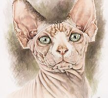 Sphynx by BarbBarcikKeith