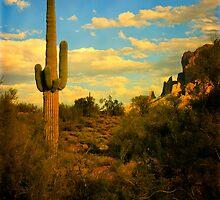 Desert Cactus by George Lenz