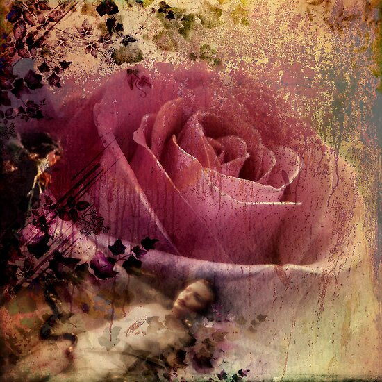 Where The Wild Roses Grow by Vanessa Barklay
