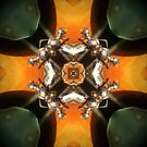 Kitchen Kaleidoscope by Brian Varcas
