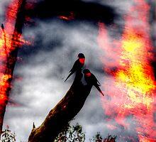 Fire Birds by Robert  Welsh