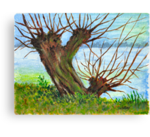2 WILLOW TREES Canvas Print