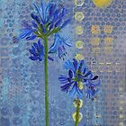 Agapanthus by Susan Duffey