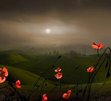 Haze On The Hills by Igor Zenin