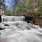 Full Force at Oneida Falls by Lori Deiter