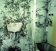 nature's bathroom by Steph Enbom
