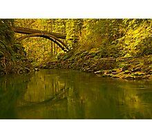 Footbridge Landscape Photographic Print