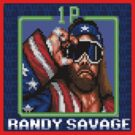 Randy Savage Nintendo by chrisbarton303