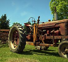 The Good Old Workhorse by Chuck Chisler