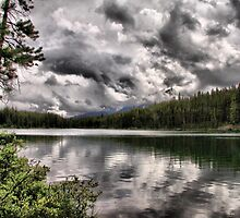 Herbert Lake by Vickie Emms