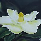 Sweet South Carolina Nights - Magnolia Blossom by Karen L Ramsey