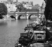 Living on the Seine by Karen E Camilleri