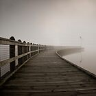 Fog on the dock by David Gray