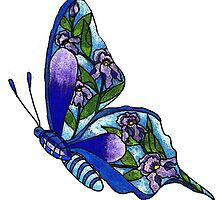 Iris Butterfly Illustration by plunder