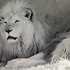 Kimba the White Lion.  Yeah, right.... by lightsmith