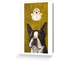 Boston and Plover Greeting Card