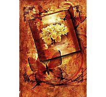 *Hydrangea & Butterflies Compilation* Photographic Print