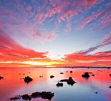 Stepping Stones to Heaven - Cleveland Point Qld by Beth  Wode