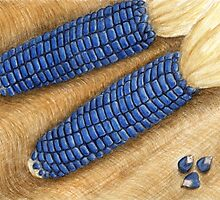 Blue Corn - Watercolor Pencil Drawing by Melissa Rogers